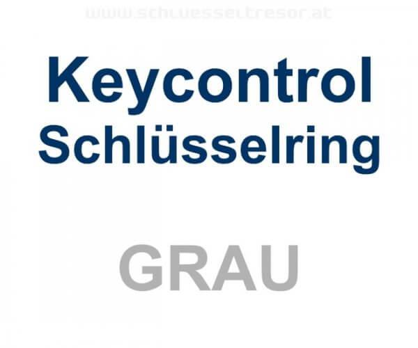 Keycontrol Schlüssel-Ring GRAU
